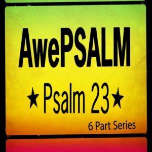 AwePSALM (MP3 Series)