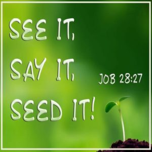 See It Say It Seed It! – 11:00am (MP3)