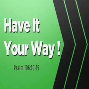 Have It Your Way! – 8:30am and 11am (MP3)